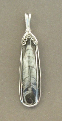 Argentium Silver Wire-wrapped Orthoceras Fossil